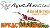Aqua-Monsters АкваМонстры) декабрь 2018