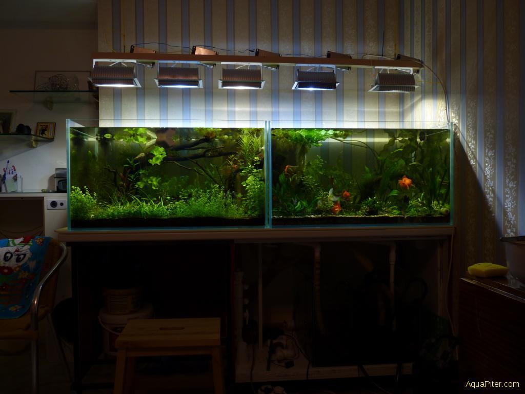 Сделать аквариум на 250 литров своими руками 36