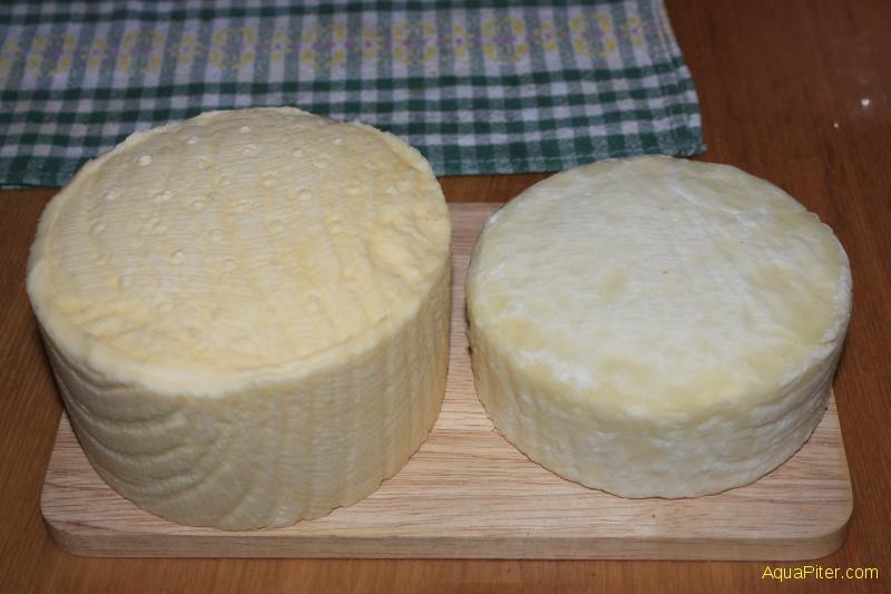 Как из магазинного молока сделать сыр