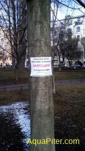 20200401 Александровский парк.jpg