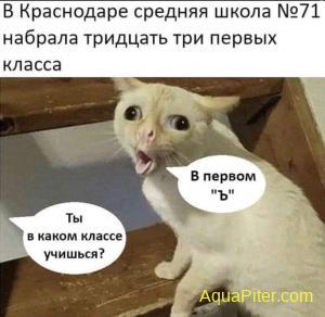 fb_img_1598903819209.jpg