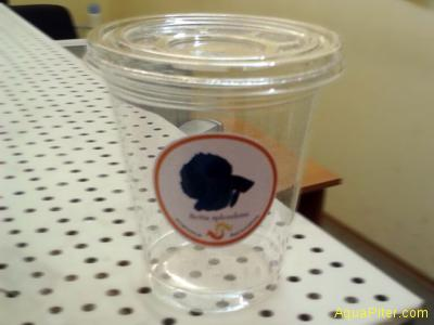 Стаканчик для петушка, 0,33 ml