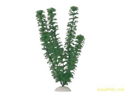 """Искусственное растение """"Кабомба"""""""