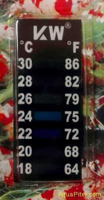 Термометр жидкокристаллический Shrimp Digital