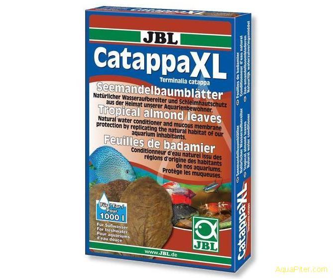 catappa-xl_01.jpg