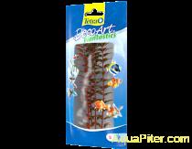 Растение аквариумное Red Ludwigia 2 (S) 23см