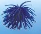 """Декор """"Грот Коралл мягкий"""", синий, светящийся"""