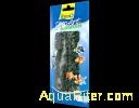 Растение аквариумное Hygrophila 1 (S) 15см