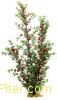 Искусственное растение 60 см, в картонной коробке, YS-10111